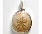 Photo of urchin silver pendant