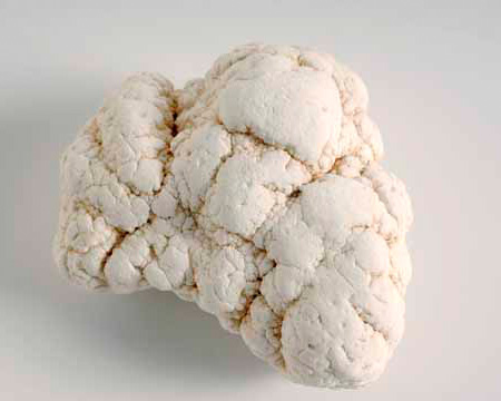 Photo of magnesite nodule