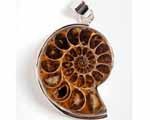 Photo of ammonite silver pendant