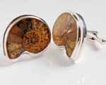 Photo of sectioned ammonite cufflinks