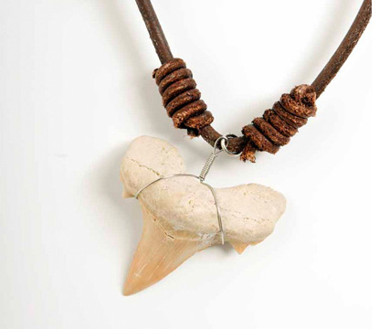 Otodus necklace